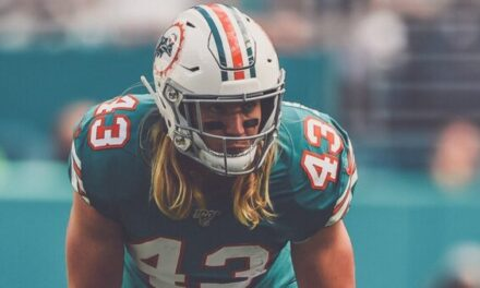 Dolphins Stock Market: Who's Rising and Who's Falling?