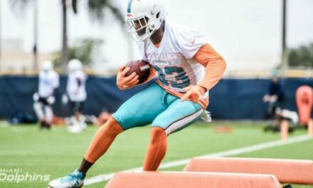 VIDEO: Back to Dolphins Football