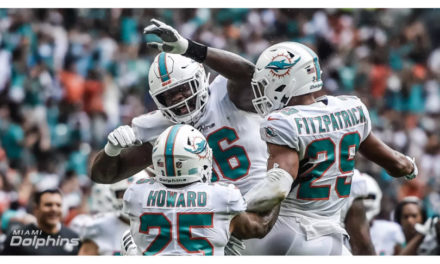 Dolphins 2018 Team Report Card