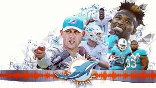 Help Fellow Miami Dolphins Fans with Hurrican Irma Relief- Give $1 or $2 if you can