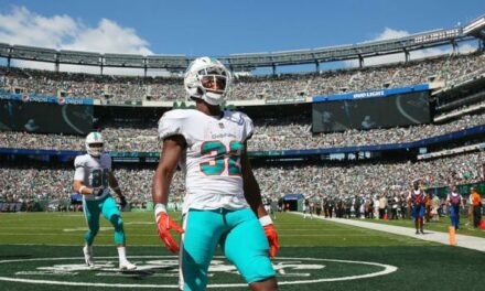Some Dolphins Players I Want To See More Of