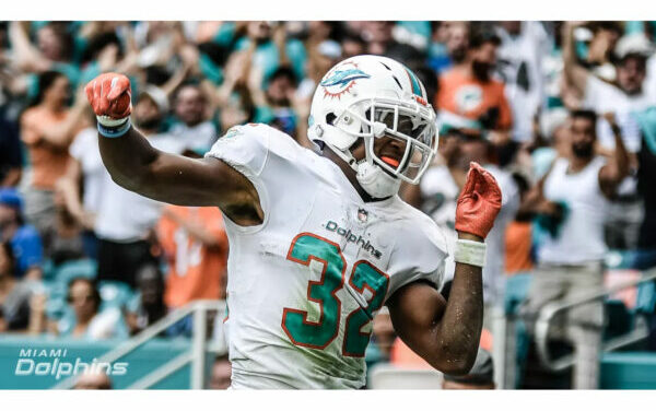 Way Too Early Dolphins Fantasy Projections