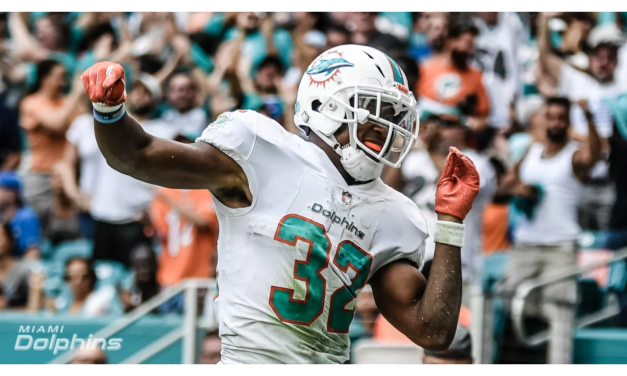 Deep Reflections: Dolphins vs. Texans Week 8