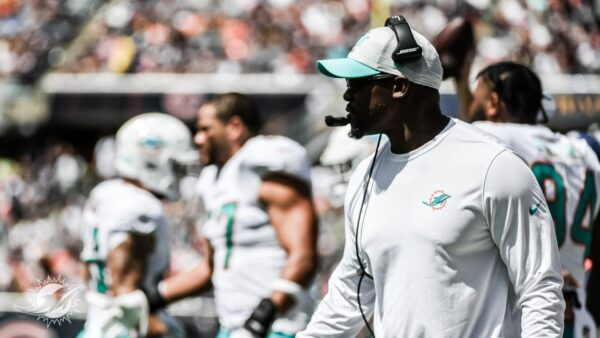 Have the Dolphins Hit Rock Bottom?