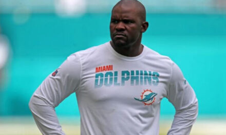 Miami Dolphins – Resilient