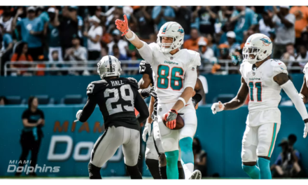 5 Goals For The Dolphins Against The Bears