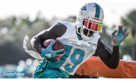 VIDEO: Miami Dolphins Training Camp Battles – WR