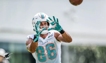 Mack Hollins is a Dog the Dolphins Need