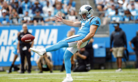 Miami Dolphins Sign Punter Michael Palardy