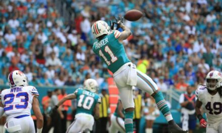 The Case for DeVante Parker