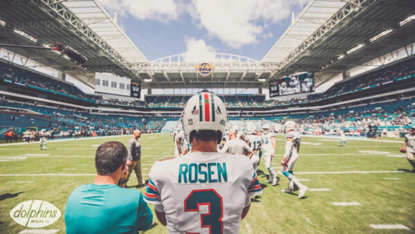 What Should the Dolphins do with Josh Rosen?
