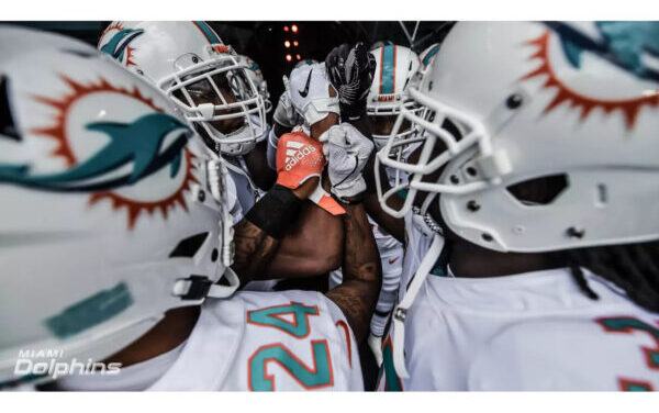 DT Daily 8/7: Free Agent Options for the Dolphins