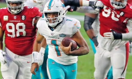 Patience Remains Key for Dolphins Fans