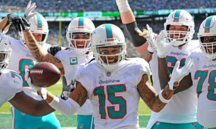 2018 Dolphins Game by Game Report Card