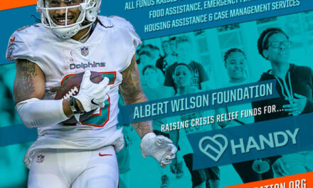 Albert Wilson Foundation Working with HANDY