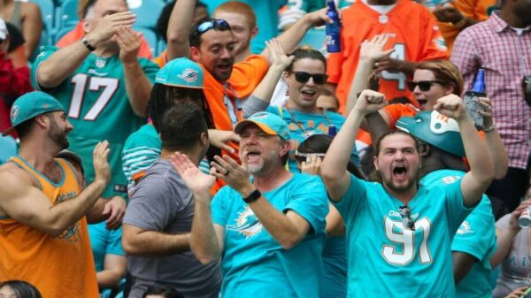 The Essence of Being a Dolphins Fan