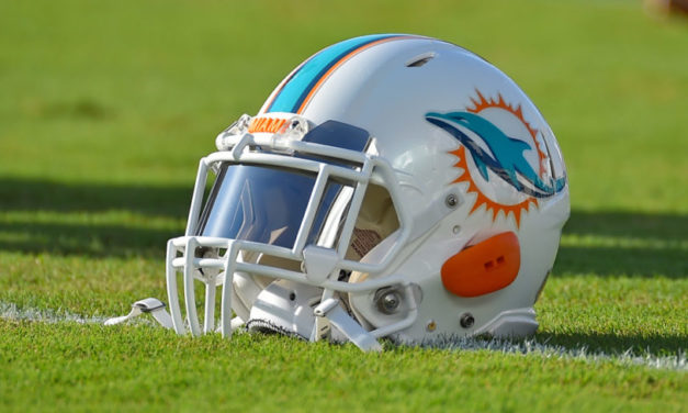 Dolphins Are The Definition of an Underdog in 2019