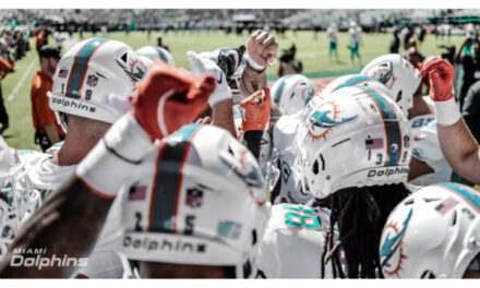 Dolphins Newcomers Reveal How They Stay Fit at Home
