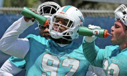 VIDEO: Strongest Position on the Dolphins